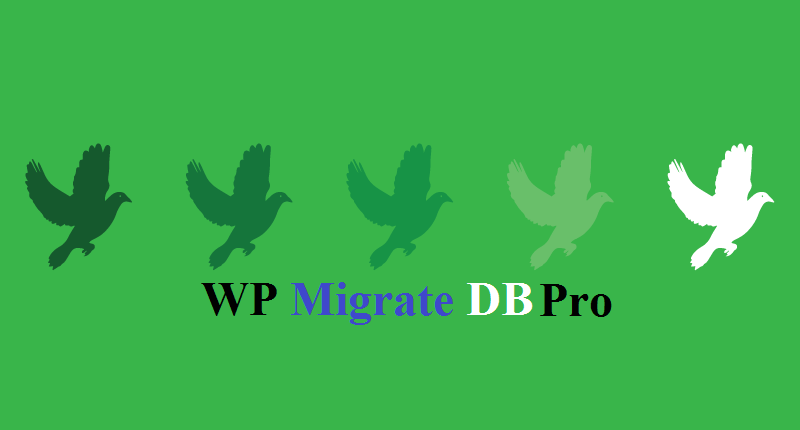WP Migrate DB Pro discount